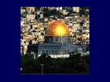 UNESCO envoy to inspect Temple Mount digs